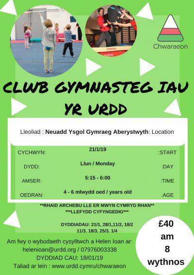Aberystwyth Junior Gymnastics club