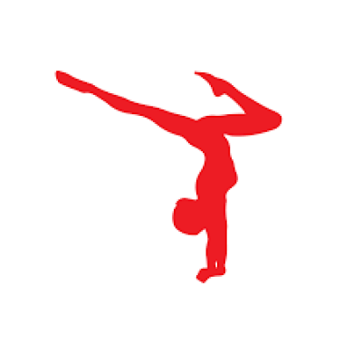 Maldwyn county primary gymnastics competition